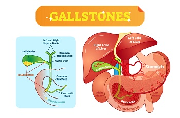 Our Gastroenterology Blog - Gastroenterologist Nashville, TN